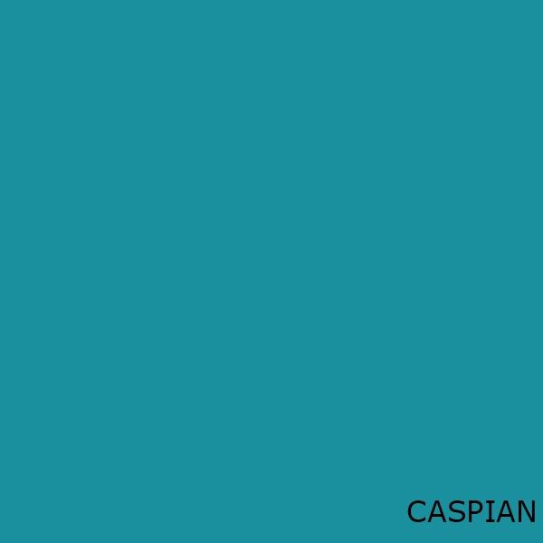 Caspian Toilet Seats