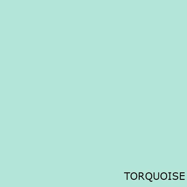 Turquoise Toilet Seats