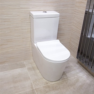 Complete view of a toilet
