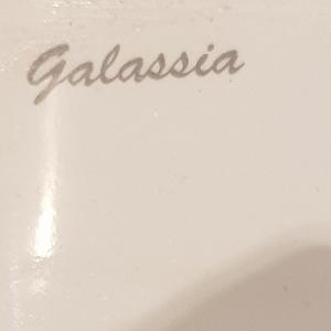 A logo imprinted on a toilet